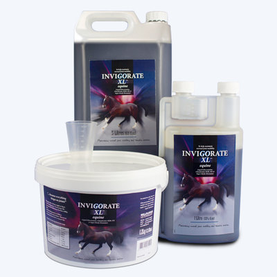 Invigorate XL Equine