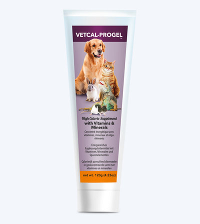Vetcal Progel Tube 2019